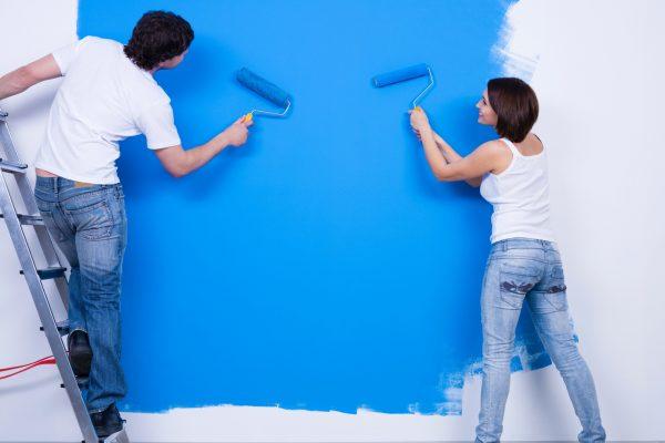 Les Diffrentes Catgories De Peinture Murale Et Finitions